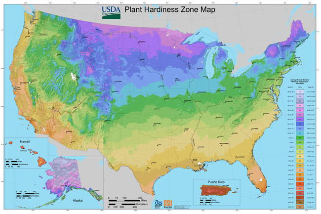 US Plant Zones Explained | Garden Express